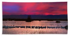 Snow Geese Sunset Beach Sheet