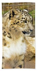 Snow Leopard 1 Beach Towel