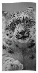Beach Sheet featuring the photograph Snow Leopard  Bw by Sandy Keeton