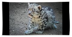 Snow Leopard Cub Beach Sheet