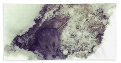 Beach Towel featuring the photograph Snow Mouse by Rasma Bertz