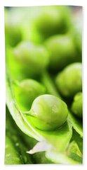 Snow Peas Or Green Peas Seeds Beach Towel by Vishwanath Bhat