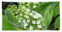 Snow Queen Hydrangea Beach Sheet