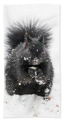 Snow Squirrel Beach Sheet