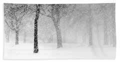 Snow Storm At Starved Rock Beach Towel