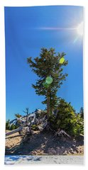 Beach Towel featuring the photograph Snow Tree by Jonny D