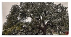 Snowfall On Emancipation Oak Tree Beach Towel