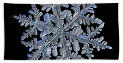 Snowflake Macro Photo - 13 February 2017 - 3 Black Beach Sheet