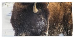 Snowy Bison Beach Towel