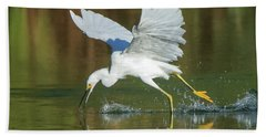 Snowy Egret 4845-091917-2cr Beach Towel