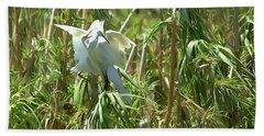Snowy Egret Feeding Its Young - Digitalart Beach Towel
