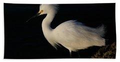 Snowy Egret, Florida Beach Towel