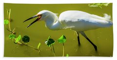 Snowy Egret In Florida Beach Towel