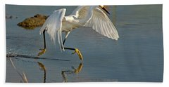 Snowy Egret On The Move Beach Towel