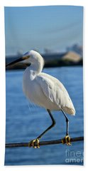 Snowy Egret Portrait Beach Towel by Robert Bales