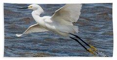 Snowy Egret Taking Off Beach Towel