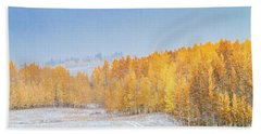 Snowy Fall Morning In Colorado Mountains Beach Sheet