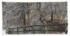 Winter Fence Beach Sheet