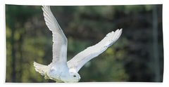 Snowy Glide Beach Towel