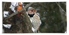 Snowy Northern Flicker Beach Sheet by Trina Ansel
