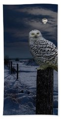 Snowy Owl On A Winter Night Beach Sheet