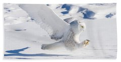 Snowy Owl Pouncing Beach Towel