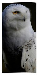 Snowy Owl Profile Beach Towel