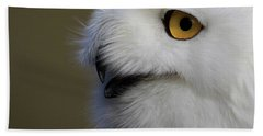 Snowy Owl Up Close Beach Sheet by Steve McKinzie