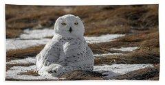Snowy Owl,marsh Beach Towel