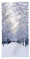 Snowy Pathway Beach Towel