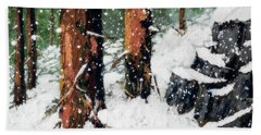 Snowy Redwood Dream Beach Towel