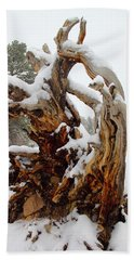 Snowy Roots 2 Beach Towel