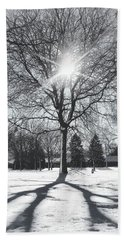 Snowy Shadows Beach Towel