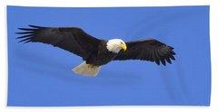Soaring Eagle Beach Sheet