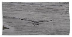Soaring Gull Beach Towel