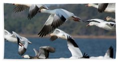 Soaring On The Wing Beach Towel