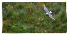 Beach Sheet featuring the photograph Soaring Seagull by Joe Bonita