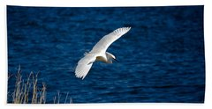 Soaring Snowy Egret  Beach Sheet by DigiArt Diaries by Vicky B Fuller