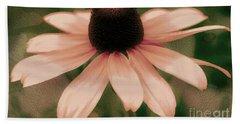 Soft Delicate Pink Daisy Beach Sheet by Judy Palkimas