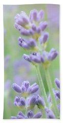 Beach Sheet featuring the photograph Soft Focus Lavender by Lynn Bolt