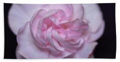 Soft Pink Rose Beach Towel