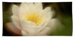 Soft Water Lily Beach Towel by Richard Cummings