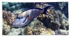 Sohal Surgeonfish 5 Beach Towel