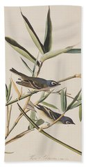 Solitary Flycatcher Or Vireo Beach Sheet by John James Audubon