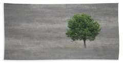 Solitary Tree Beach Sheet
