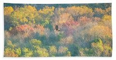 Beach Sheet featuring the photograph Solo Eagle With Fall Colors by Jeff at JSJ Photography