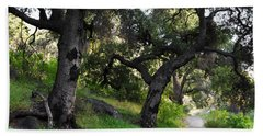 Beach Towel featuring the photograph Solstice Canyon Live Oak Trail by Kyle Hanson