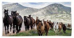 Sombrero Ranch Horse Drive, An Annual Event In Maybell, Colorado Beach Sheet