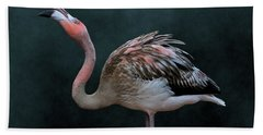 Song Of The Flamingo Beach Towel