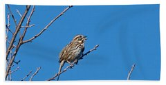 Beach Towel featuring the photograph Song Sparrow by Michael Peychich